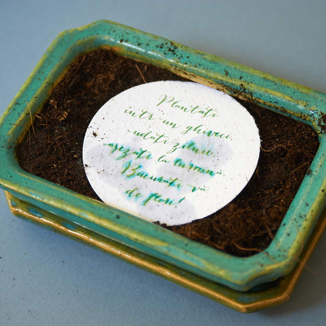 Marturi de nunta - card plantabil cu seminte de flori