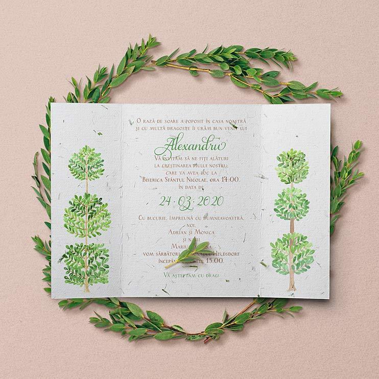 Gradina Magica este o invitatie de botez cu tema Green / Verde, din hartie manuala ce contine iarba de grau, ilustratii pictate in tema gradina din povesti