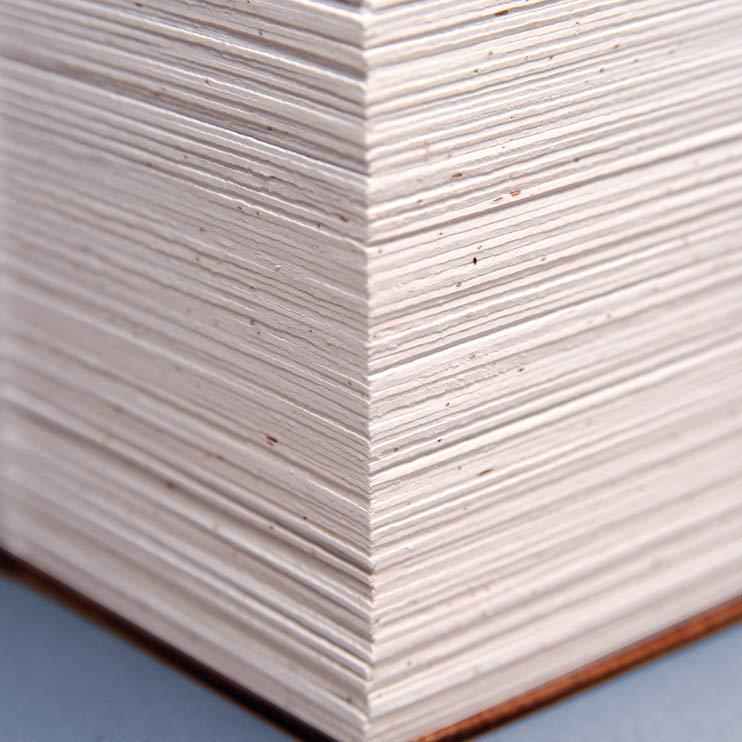 plantable paper, hartie plantabila