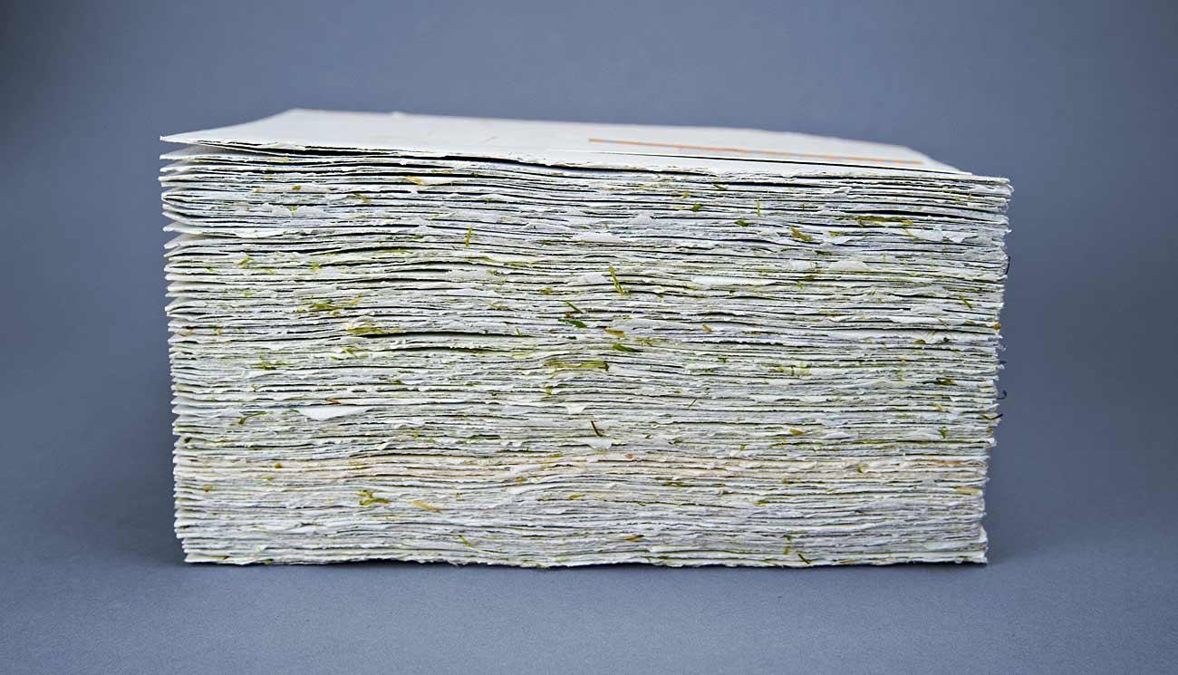 hartie cu insertii de iarba, meniu special, meniu Lacrimi si Sfinti, handmade paper meniu